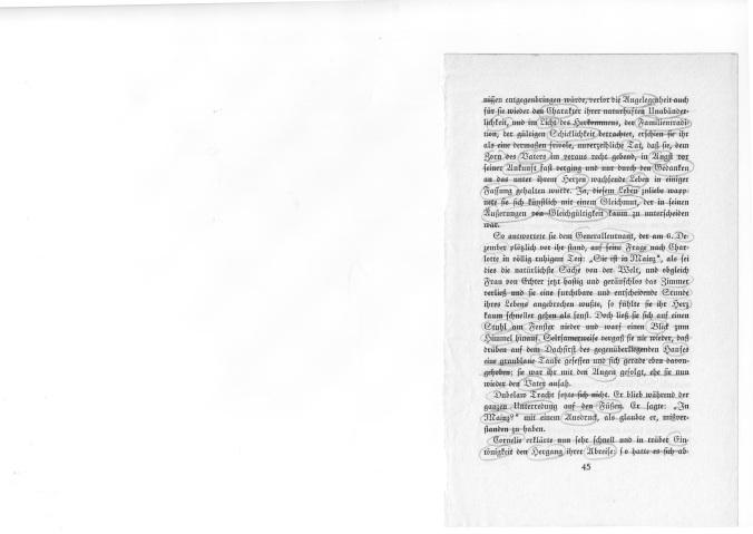 konzeptionelle-literatur-1