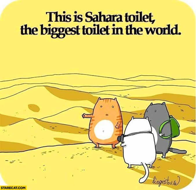 this-is-sahara-toilet-the-biggest-toilet-in-the-world